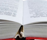 photo of an open book