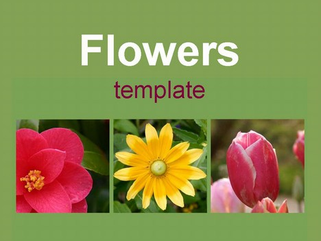 Three Flowers Template
