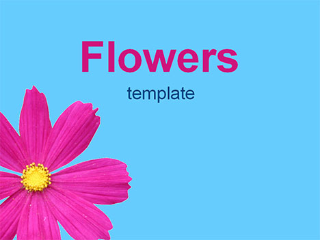 presentation magazine  flowers, Powerpoint