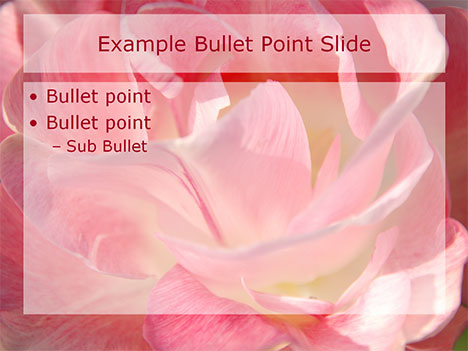 Romantic Flowers PowerPoint Template inside page