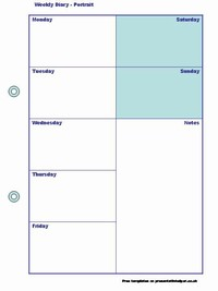 health diary template