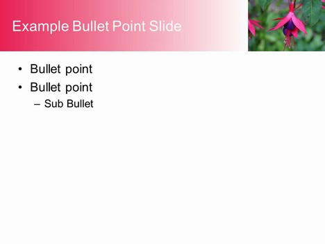 Fuchsia PowerPoint Template inside page