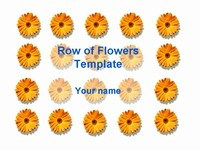 Row of flowers template thumbnail