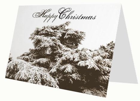 Christmas Winter Scene Card inside page