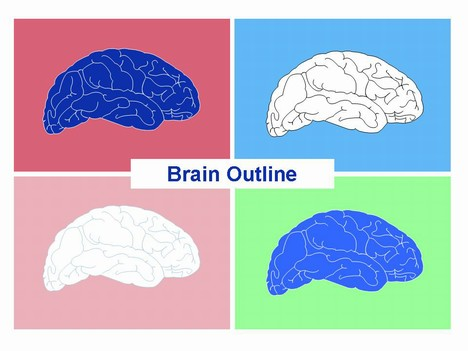 Brain outline powerpoint template1g toneelgroepblik Images