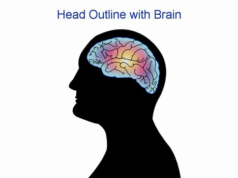 Head outline with brain