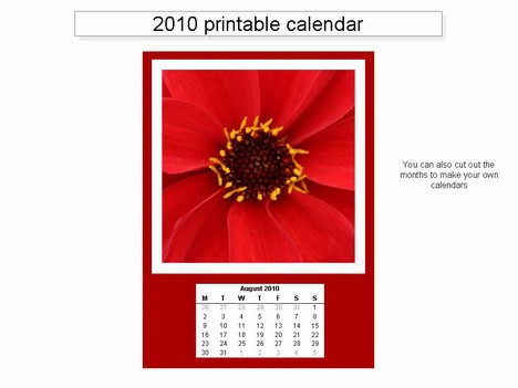 Free Printable 2010 Calendar inside page