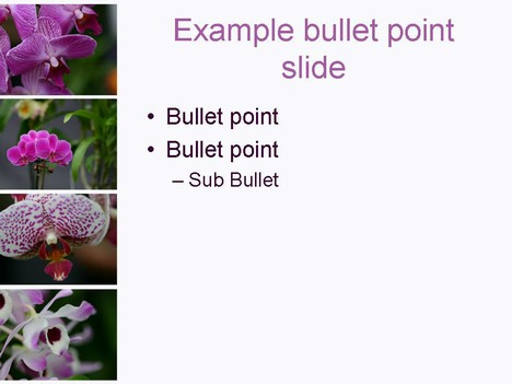 Orchid PowerPoint Template inside page