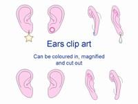 Ear Outlines Clip Art