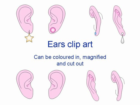 Ear Outlines Clip Art