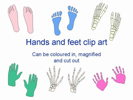 photograph relating to Hand Outline Printable known as Fingers and Toes Template