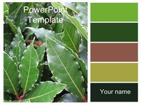 Green Leaves PowerPoint Template thumbnail