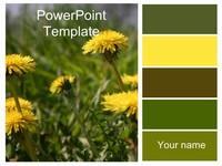 Wild Dandelion Template