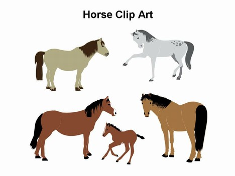 horse clip art template rh presentationmagazine com clip art horses black and white clipart horse silhouette