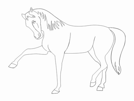 Horse Outlines Template inside page