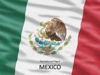 Flag of Mexico Template