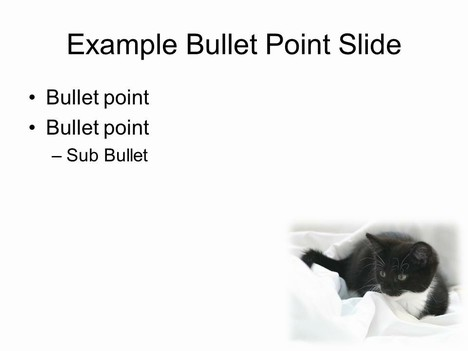 Kitten PowerPoint Template inside page