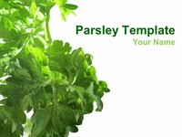 Parsley PowerPoint Template