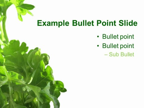 Parsley PowerPoint Template inside page