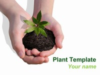 Plant PowerPoint Template thumbnail