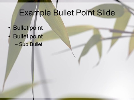 Bamboo PowerPoint Template inside page