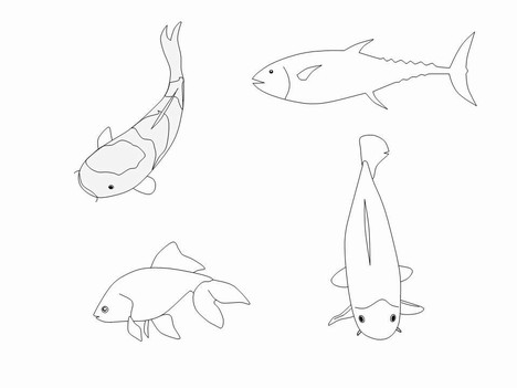 Fish Outline Clip Art inside page