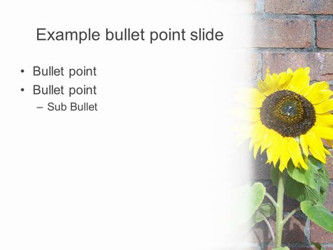 Sunflower PowerPoint Template 2 inside page