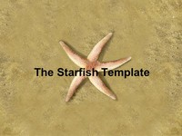 The Starfish PowerPoint Template (photo) thumbnail