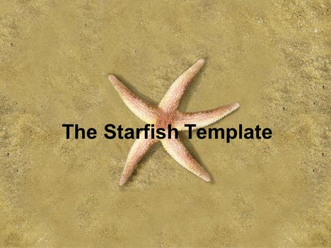 The Starfish PowerPoint Template (photo)