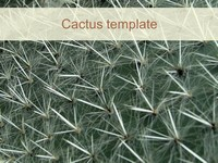 Cactus PowerPoint Template thumbnail