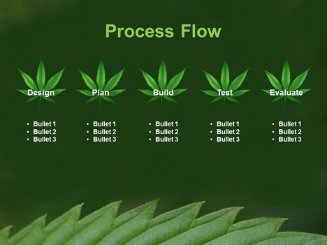 Cannabis Leaf PowerPoint Template inside page