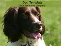 Dog PowerPoint Template thumbnail