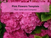 Pink Flower Template