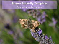 Brown Butterfly PowerPoint Template