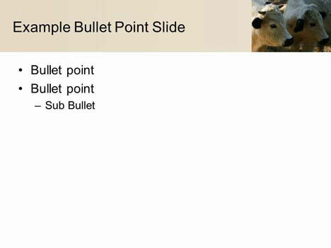 Cow PowerPoint Template inside page