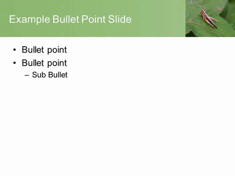 Grasshopper PowerPoint Template inside page