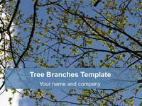 Free Tree Branches background Template thumbnail