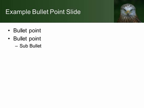 Bird of Prey PowerPoint Template inside page