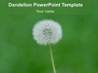Free Dandelion PowerPoint Template thumbnail