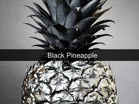 Black Pineapple Template