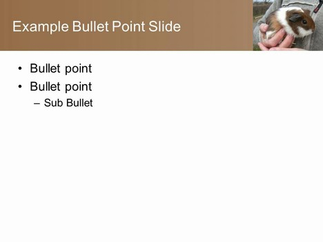 Guinea Pig PowerPoint Template inside page
