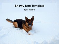 Snowy Dog Template