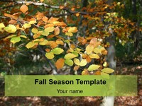 Fall Season Background Template thumbnail