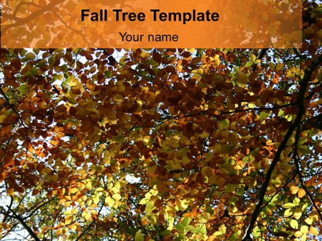 tree in the fall powerpoint template