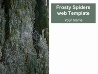 Frosty Spider's Web Template thumbnail