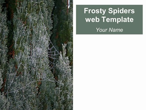Frosty Spider's Web Template