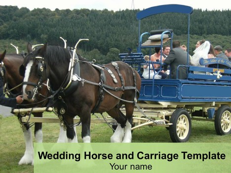Wedding Horse and Carriage Template