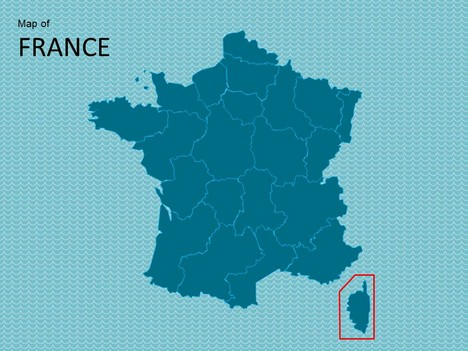 Map of France Template inside page