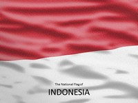 Flag of Indonesia Template