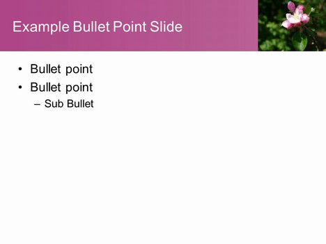 Pink Blossom Template inside page